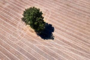 Une parcelle de Normandie vue du ciel par drone
